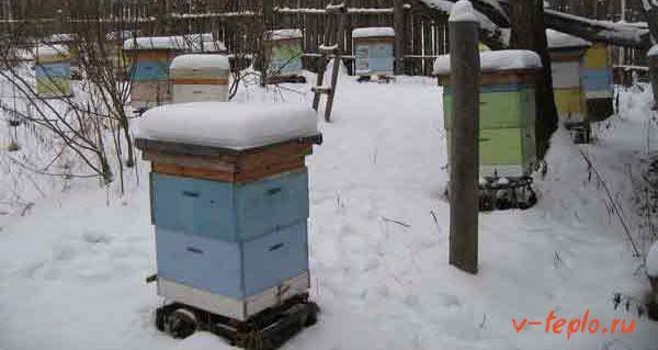 Утепление ульев на зиму