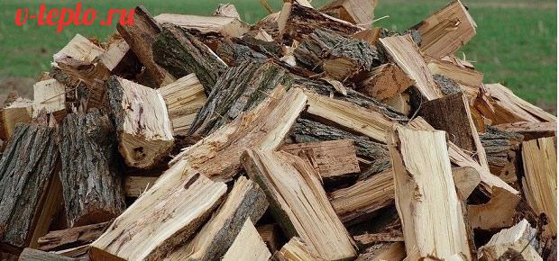 Дрова из тополя свойства