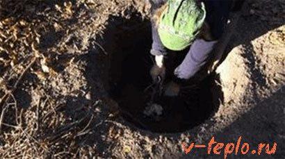 делаем древесный уголь в яме